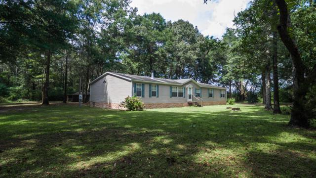 423 E Tedder Road, Paxton, FL 32538 (MLS #783720) :: Somers & Company