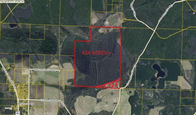 400AC T R Miller Road, Defuniak Springs, FL 32433 (MLS #783924) :: Classic Luxury Real Estate, LLC