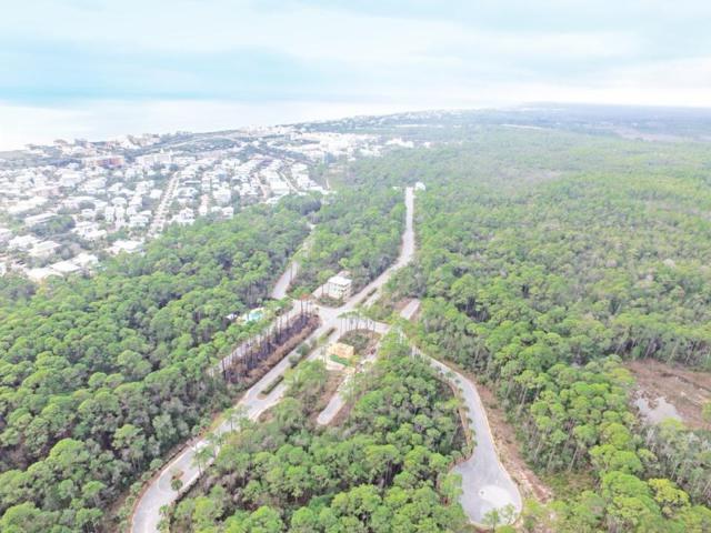 Lot 56 Redbud Lane, Seacrest, FL 32461 (MLS #783939) :: Coast Properties