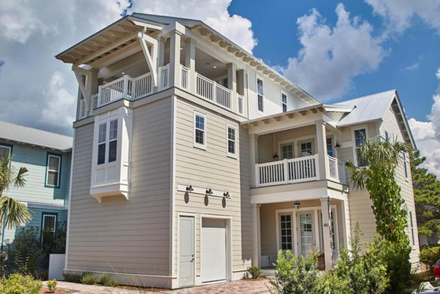 46 Cobia Run, Seacrest, FL 32461 (MLS #783947) :: Scenic Sotheby's International Realty