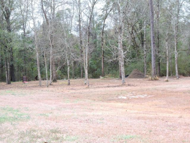 Lot 14 Long Needle Court, Baker, FL 32531 (MLS #784394) :: Classic Luxury Real Estate, LLC
