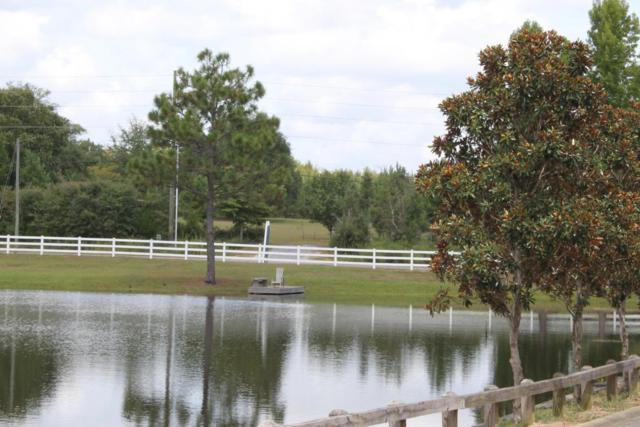 Lot 25 Lake Ridge Estates, Crestview, FL 32539 (MLS #784774) :: ResortQuest Real Estate