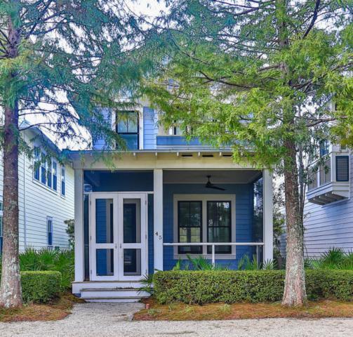 45 Winterberry Circle, Santa Rosa Beach, FL 32459 (MLS #784821) :: Scenic Sotheby's International Realty