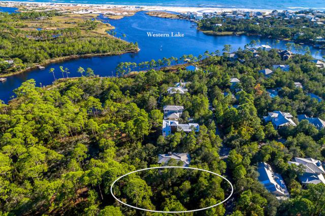 Lot 1 Wilderness Way, Santa Rosa Beach, FL 32459 (MLS #785826) :: Luxury Properties on 30A