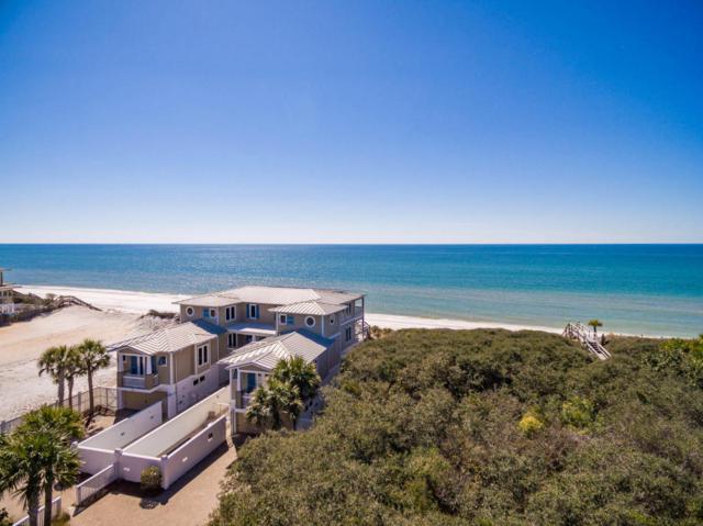 179 Pelican Circle, Seacrest, FL 32461 (MLS #786895) :: Luxury Properties on 30A
