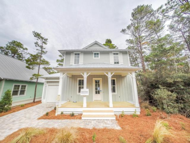 384 Matt's Way, Santa Rosa Beach, FL 32459 (MLS #787201) :: Davis Properties
