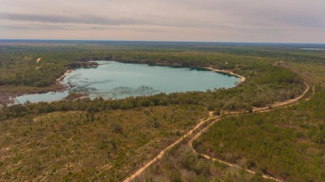 Lot 12 Hammond Lake Dr, Chipley, FL 32428 (MLS #787352) :: Classic Luxury Real Estate, LLC