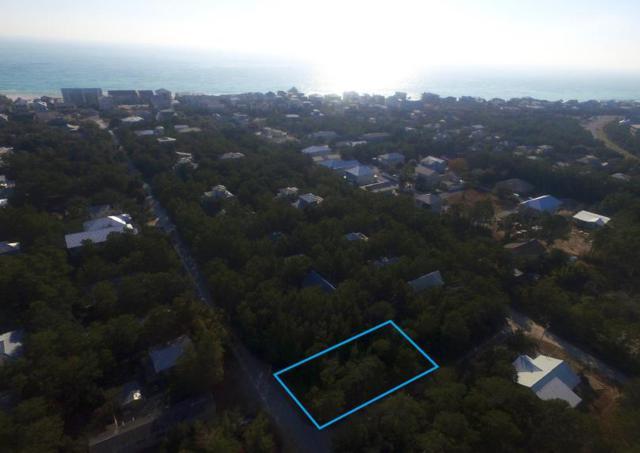 Lot 41 Williams Street, Santa Rosa Beach, FL 32459 (MLS #787505) :: Scenic Sotheby's International Realty
