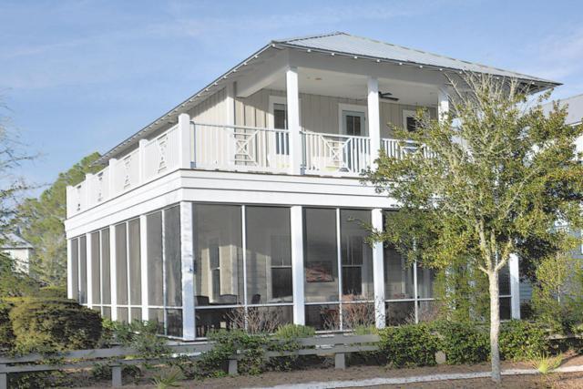 189 E Royal Fern Way, Santa Rosa Beach, FL 32459 (MLS #787733) :: Davis Properties