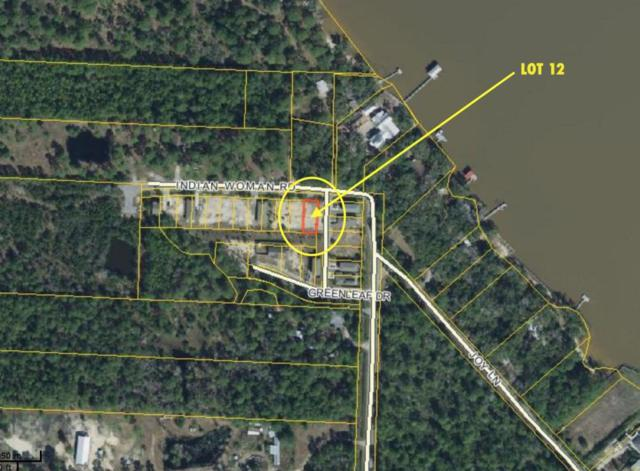 Lot 12 Indian Woman Road, Santa Rosa Beach, FL 32459 (MLS #787820) :: RE/MAX By The Sea