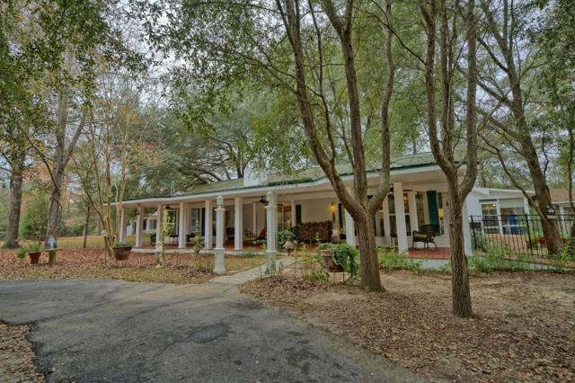 3130 Moss Hill, Vernon, FL 32462 (MLS #787823) :: RE/MAX By The Sea