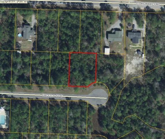 Lot 2 E Grizzly, Freeport, FL 32439 (MLS #787926) :: Hammock Bay