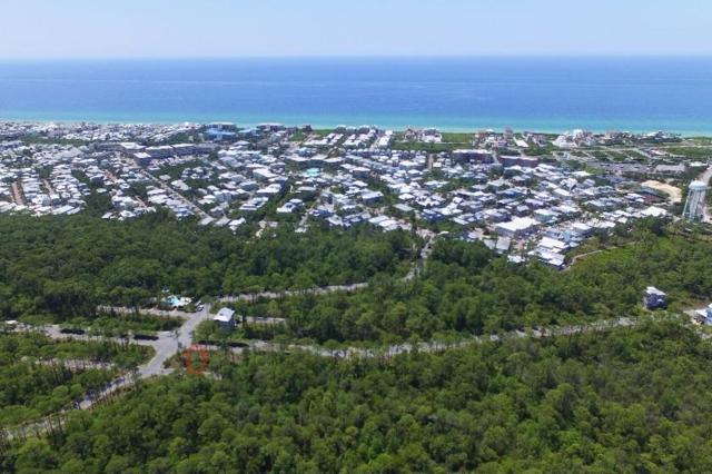 Lot 59 Redbud Lane, Seacrest, FL 32461 (MLS #788330) :: Scenic Sotheby's International Realty