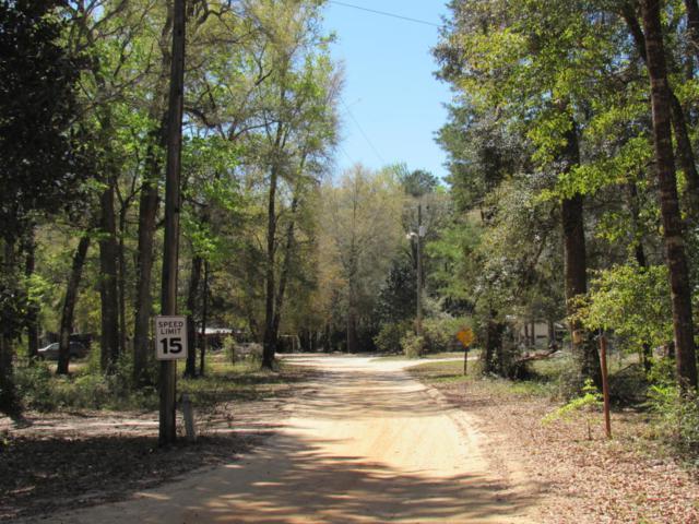 418 Magnolia Lodge Road, Freeport, FL 32439 (MLS #789605) :: 30a Beach Homes For Sale