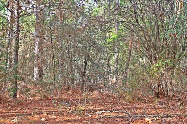 Lot 1 Pansy Lane, Defuniak Springs, FL 32433 (MLS #789643) :: Scenic Sotheby's International Realty