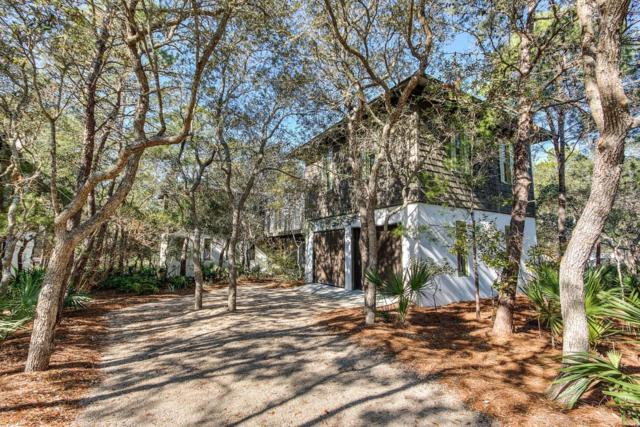 343 Wilderness Way, Santa Rosa Beach, FL 32459 (MLS #789716) :: 30A Real Estate Sales