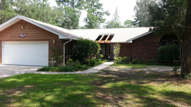 516 Shoreline Drive, Freeport, FL 32439 (MLS #790528) :: Scenic Sotheby's International Realty