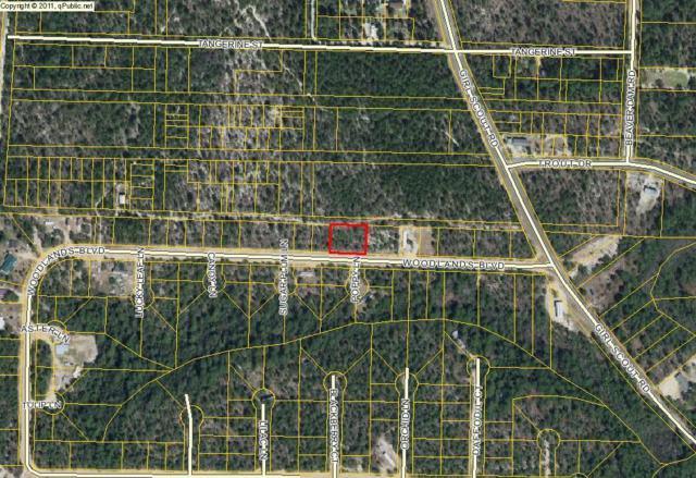 2 lots Woodland Blvd, Defuniak Springs, FL 32433 (MLS #790914) :: Classic Luxury Real Estate, LLC