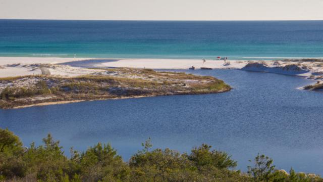 1363 W Co Highway 30-A Unit 3102, Santa Rosa Beach, FL 32459 (MLS #791378) :: Coast Properties