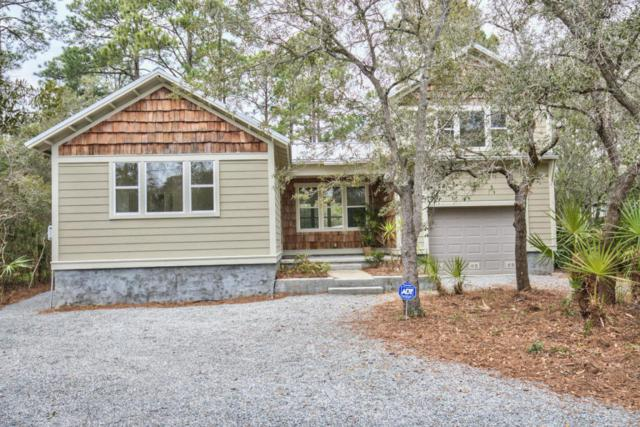 293 Pisces Drive, Santa Rosa Beach, FL 32459 (MLS #791687) :: Scenic Sotheby's International Realty