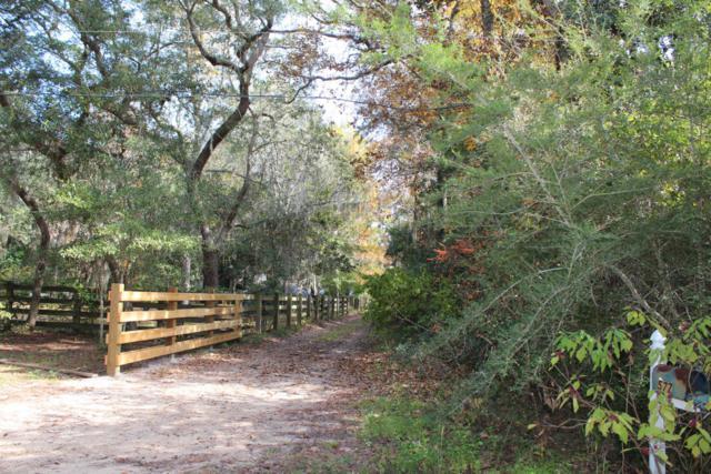 000 Mack Bayou Road, Santa Rosa Beach, FL 32459 (MLS #791890) :: Scenic Sotheby's International Realty