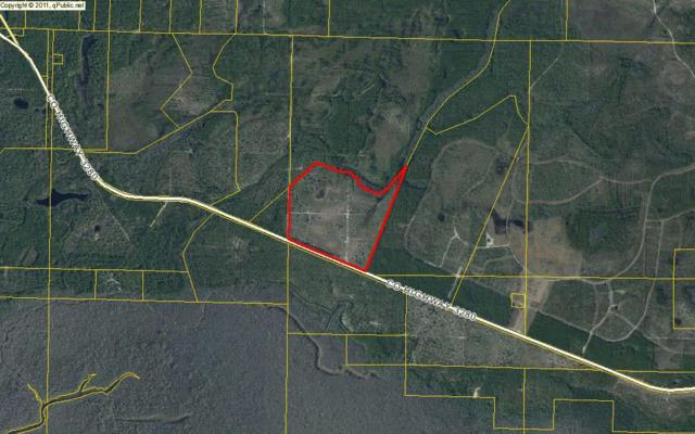 100 acres Hwy 3280, Freeport, FL 32439 (MLS #792435) :: Scenic Sotheby's International Realty