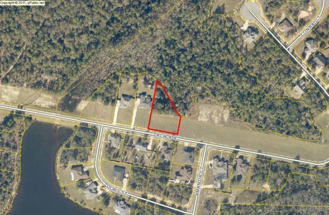 3062 Zach Avenue, Crestview, FL 32536 (MLS #795882) :: ResortQuest Real Estate