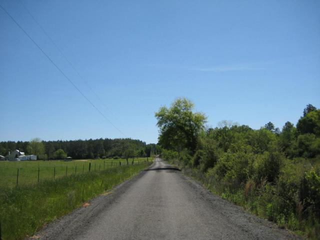 88 Acres Thad Bell Road, Defuniak Springs, FL 32433 (MLS #796009) :: ResortQuest Real Estate