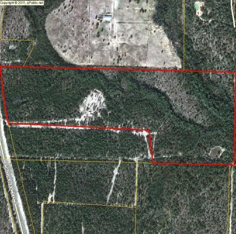 7225 Us Hwy 331, Defuniak Springs, FL 32433 (MLS #796546) :: ResortQuest Real Estate