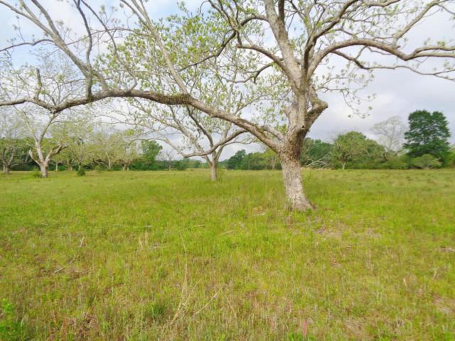150 Acres Perkins Road, Laurel Hill, FL 32567 (MLS #796595) :: ResortQuest Real Estate