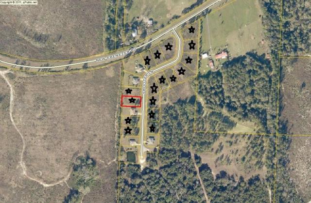 8190 Shooter Lane, Laurel Hill, FL 32567 (MLS #798049) :: Coast Properties