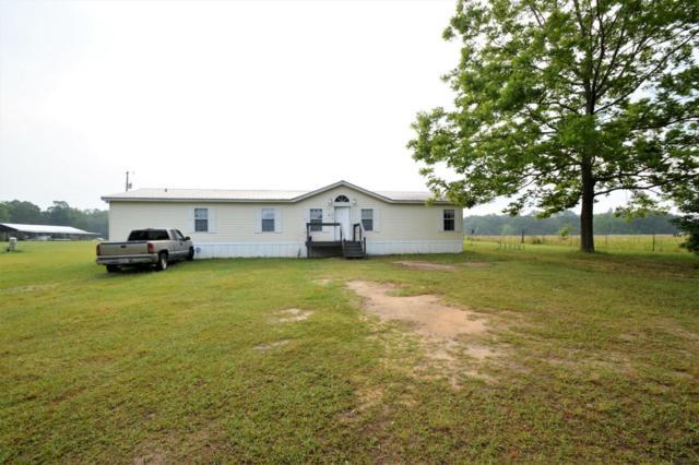 4926 Damscus Church Road, Graceville, FL 32440 (MLS #799341) :: Keller Williams Realty Emerald Coast