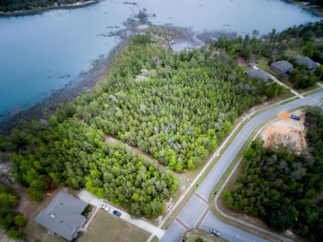 135 Lake Merial Shores Drive, Southport, FL 32409 (MLS #799343) :: Coast Properties