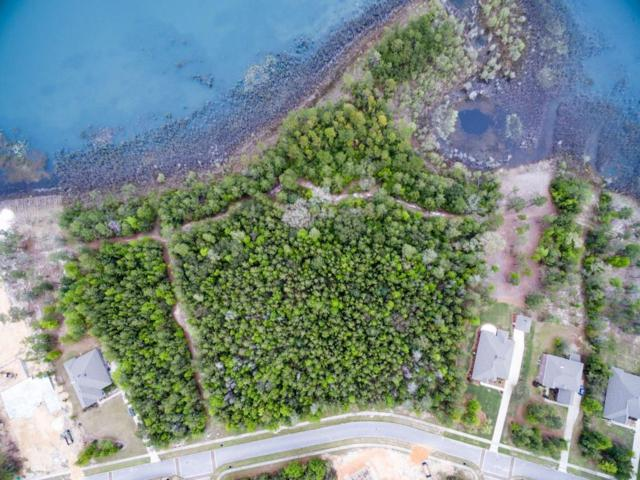 139 Lake Merial Shores Drive, Southport, FL 32409 (MLS #799347) :: Coast Properties