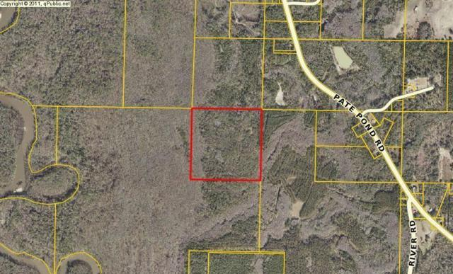 00 Pate Pond Road, Caryville, FL 32427 (MLS #799354) :: Coast Properties