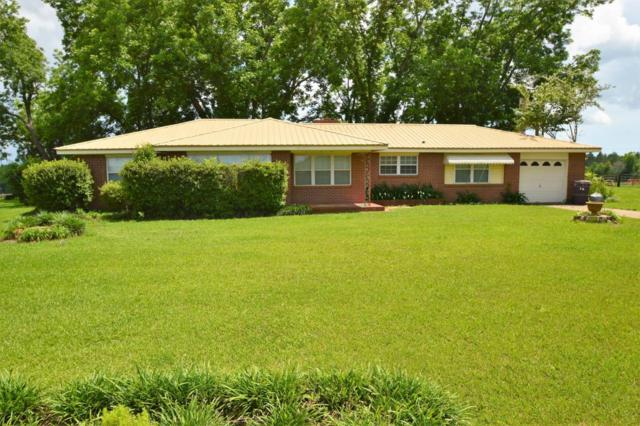 3602 Robert Murphy Road, Graceville, FL 32440 (MLS #799501) :: Keller Williams Emerald Coast