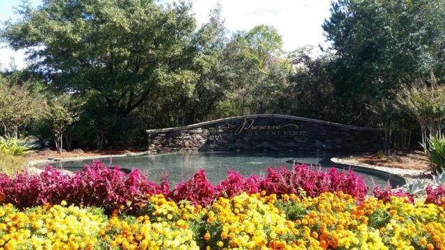 3568 Preserve Drive, Miramar Beach, FL 32550 (MLS #799999) :: Coast Properties