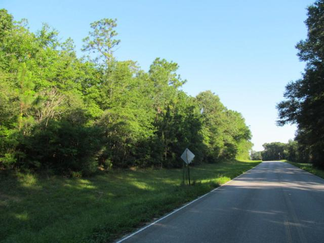 30AC Hwy 181, Westville, FL 32464 (MLS #800634) :: Scenic Sotheby's International Realty