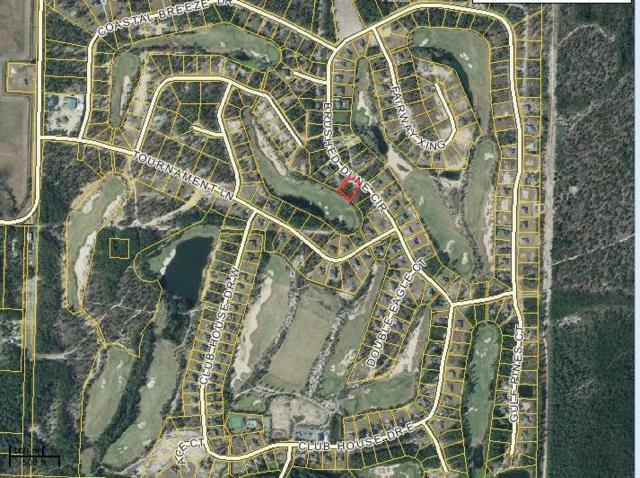Lot3 BlkE Brushed Dune Circle, Freeport, FL 32439 (MLS #800670) :: Keller Williams Realty Emerald Coast