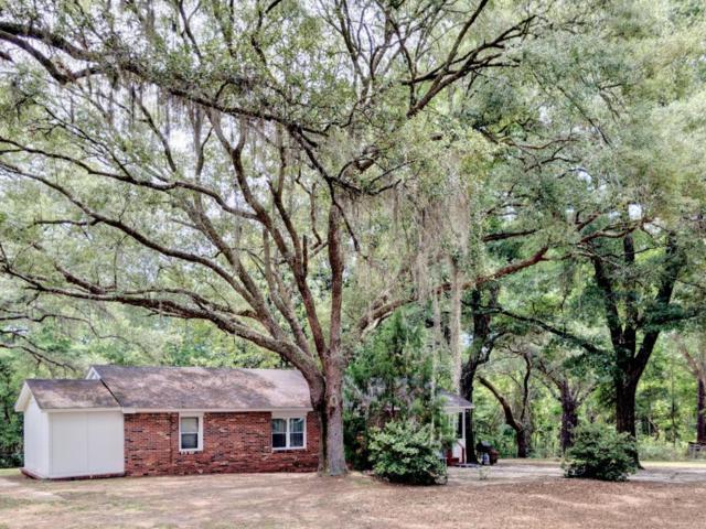 132 Stella Drive, Freeport, FL 32439 (MLS #800744) :: 30A Real Estate Sales
