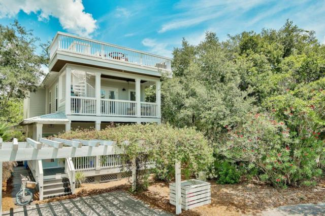 138 Cottage Way, Inlet Beach, FL 32461 (MLS #800762) :: Scenic Sotheby's International Realty