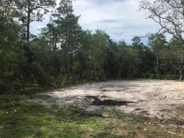 Lot 31 Greenbriar Lane, Santa Rosa Beach, FL 32459 (MLS #801015) :: Luxury Properties Real Estate