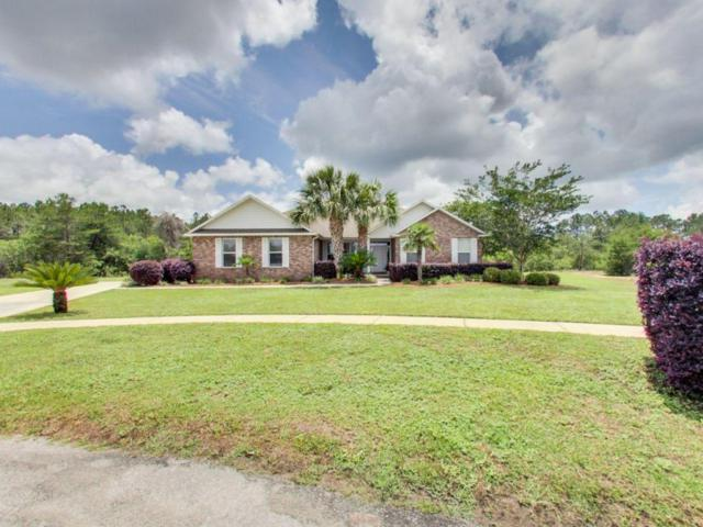 76 Ace Court, Freeport, FL 32439 (MLS #801073) :: Scenic Sotheby's International Realty
