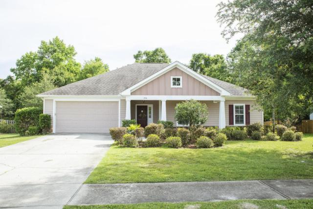 234 Camellia Court, Freeport, FL 32439 (MLS #801363) :: Scenic Sotheby's International Realty