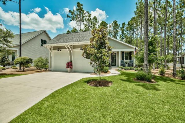 346 Jack Knife Drive, Watersound, FL 32461 (MLS #801524) :: Scenic Sotheby's International Realty