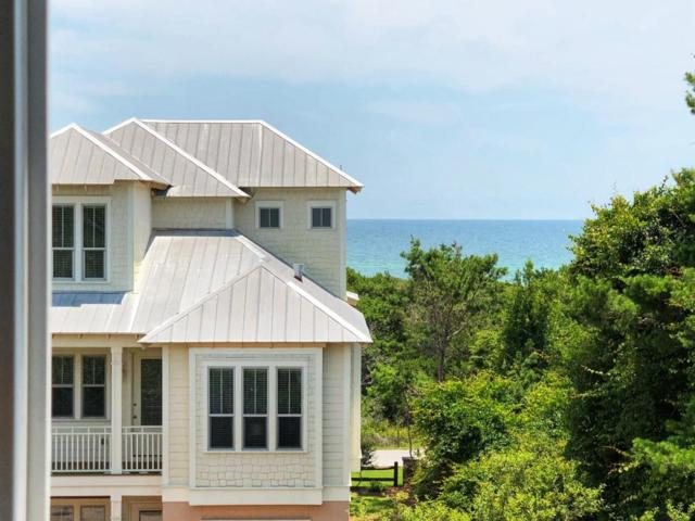 17 Pompano Court, Inlet Beach, FL 32461 (MLS #801600) :: Scenic Sotheby's International Realty