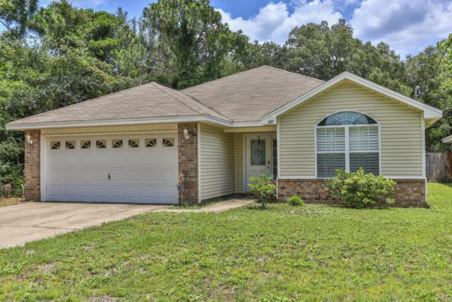489 County Line Road, Niceville, FL 32578 (MLS #801612) :: Coast Properties
