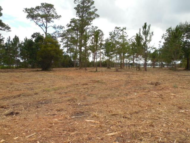 xxxx Petersen Point Road, Milton, FL 32583 (MLS #802067) :: Luxury Properties Real Estate