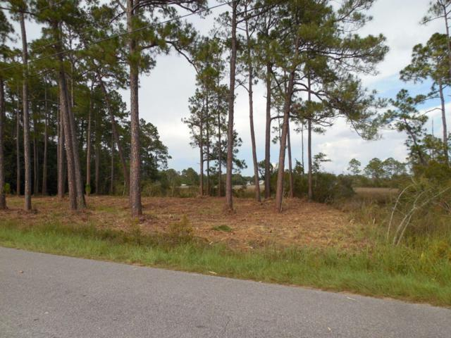 xxxx Petersen Point Road, Milton, FL 32583 (MLS #802069) :: Luxury Properties Real Estate