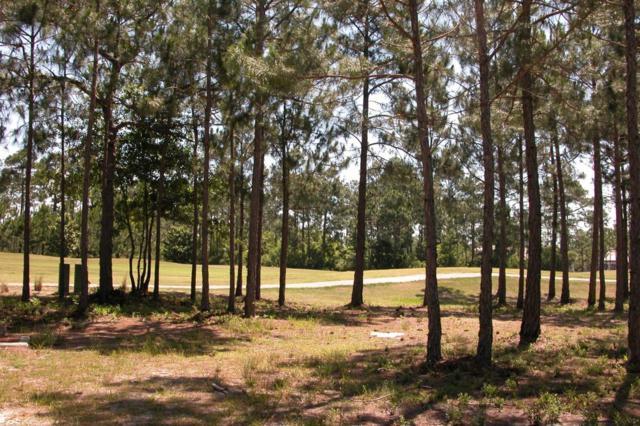 3418 Ravenwood Lane, Miramar Beach, FL 32550 (MLS #802943) :: Keller Williams Realty Emerald Coast